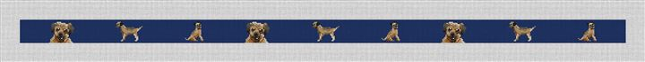 Border Terrier Needlepoint Belt Canvas