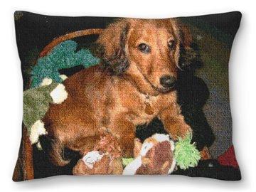 Dachshund Custom Needlepoint Pillow