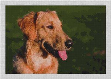 Golden Retriever Needlepoint Canvas
