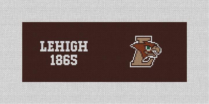 Lehigh University Hawk Needlepoint Wallet Canvas