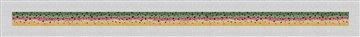 Rainbow Trout Skin Needlepoint Belt Canvas