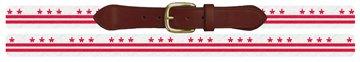 Washington DC Flag Needlepoint Belt