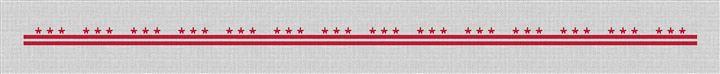 Washington DC Flag Needlepoint Belt Canvas